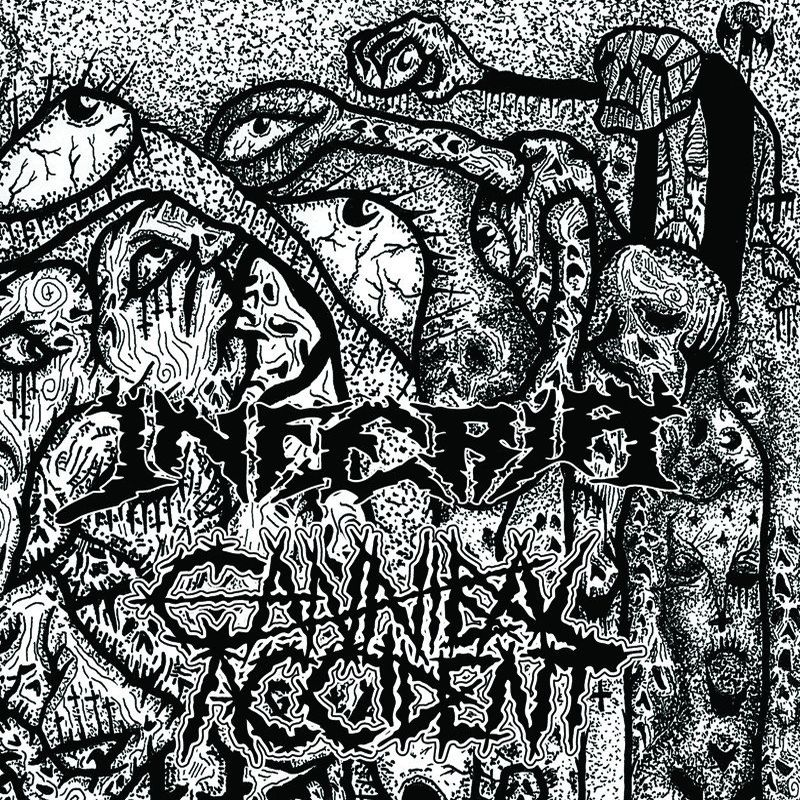 CANNIBAL ACCIDENT Split with Inferia