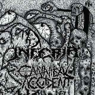 CANNIBAL ACCIDENT Split with Inferia (7'' vinyl)