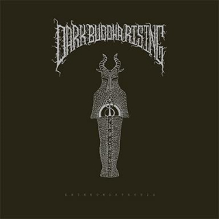 DARK BUDDHA RISING Entheomorphosis (2 LP)